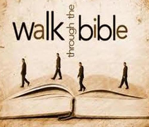 walk_through_the_bible.52ce8f46f9